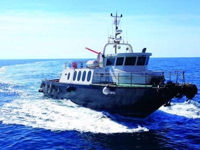 Mv SHARK